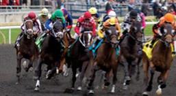 Horse Racing in Ontario