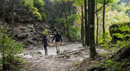 Hiking the Niagara Escarpment
