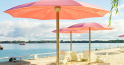 Pink umbrellas on a beach