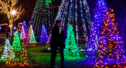 Two people standing by a christmas lights