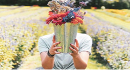 person holding fresh cut flowers