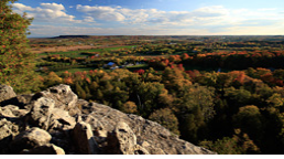 View from a cliff of a fall forest