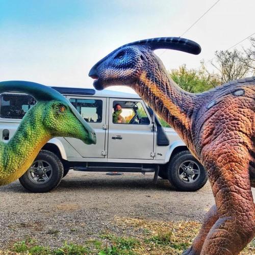 Dinosaur Drive-Thru-event-photo