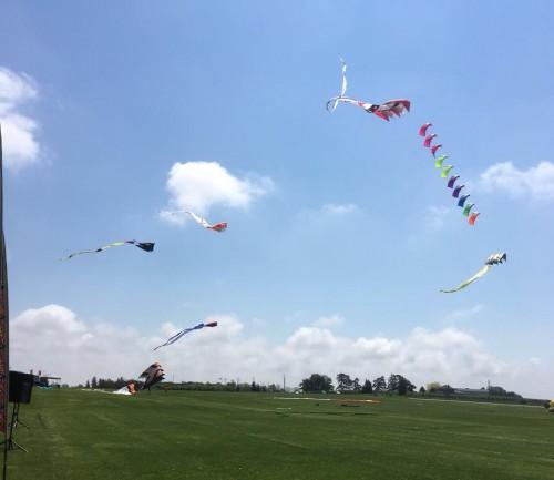 Strawberry Fields Kite Festival-event-photo
