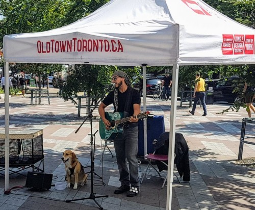 Arts in the Parks: Berczy Beats-event-photo