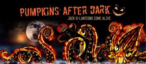 Pumpkins After Dark-event-photo
