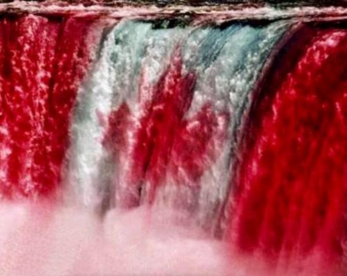Niagara Falls Canada Day Celebration-event-photo