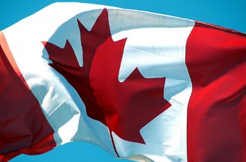 Celebrate Canada Day at Conlon Farm-event-photo