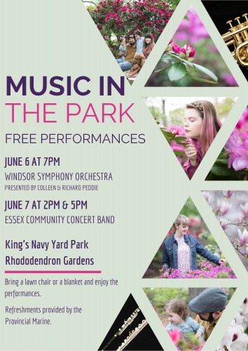 Music in the Park-event-photo