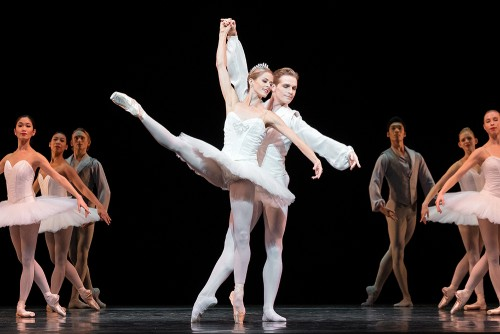 National Ballet Spotlight Series (Digital)-event-photo