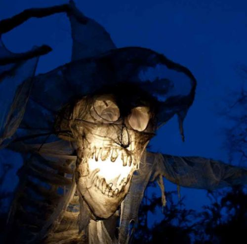 Monster Month in Elora-event-photo