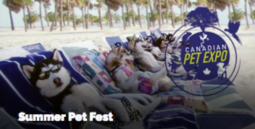 Summer Pet Fest