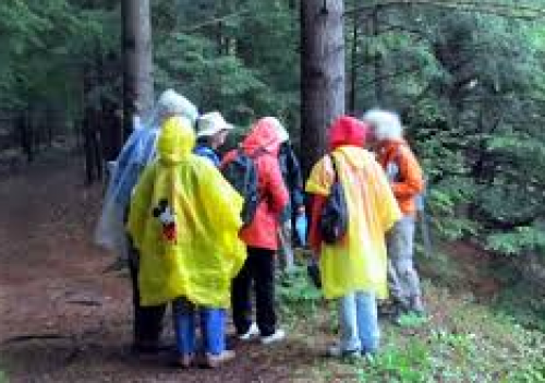 Ganaraska  Region Conservation Authority's Invasive Species Walk
