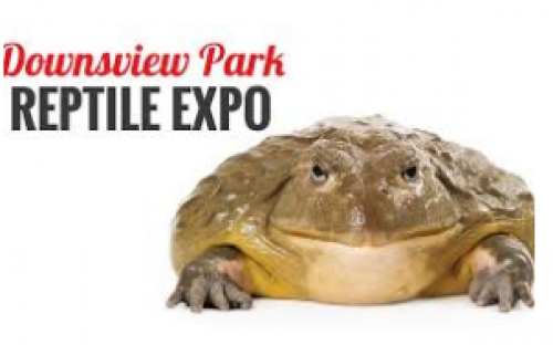 Downsview Park Reptile Expo-event-photo
