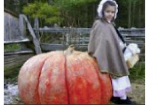 Pumpkin Sunday-event-photo