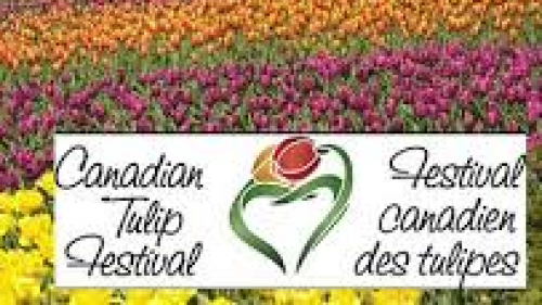 CANADIAN TULIP FESTIVAL-event-photo