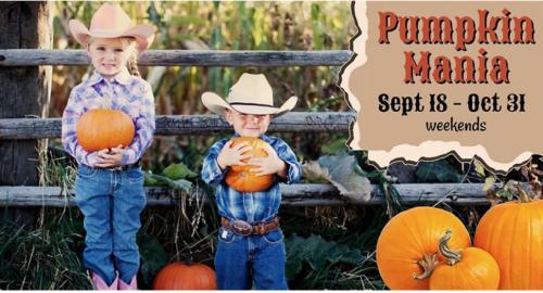 Pumpkin Mania Fall Festival-event-photo