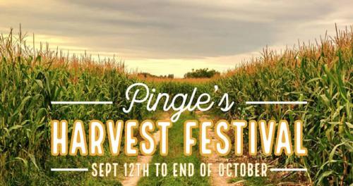 Pingle's Harvest Festival-event-photo