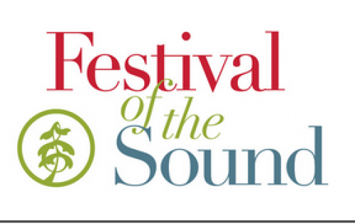 Festival of the Sound-event-photo