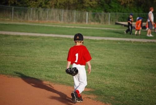 Del Harper Little League Tournament-event-photo