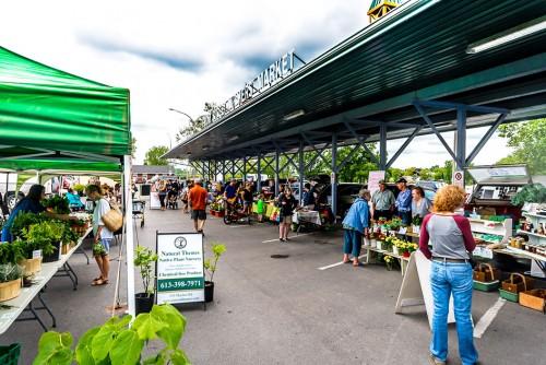 Front St Farmers' Market starts (runs until Oct. 31)