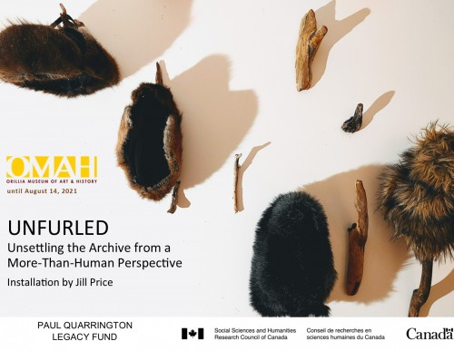 UNFURLED: Unsettling the Archive from a More-Than-Human Perspective-event-photo