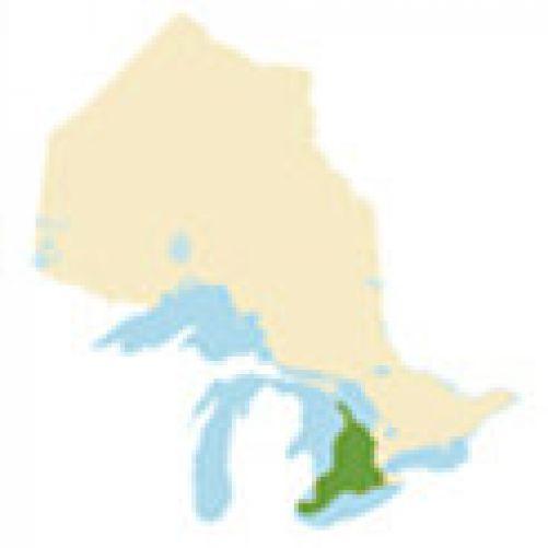 Southwestern Ontario Region