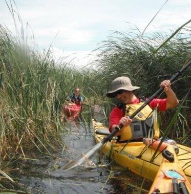 1000 Islands Kayaking in Gananoque - Outdoor Adventures in  Summer Fun Guide