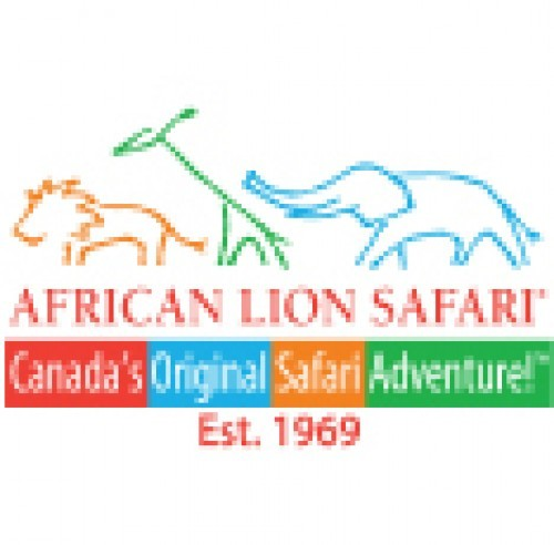 African Lion Safari in Hamilton - Animals & Zoos in  Summer Fun Guide