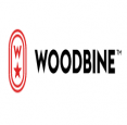 Woodbine Racetrack  in Toronto - Casinos, Slots & Racing in  Summer Fun Guide