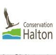 Conservation Halton Parks in Burlington - Parks & Trails, Beaches & Gardens in  Summer Fun Guide