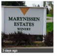 Marynissen Estates Winery in Niagara on the Lake - Wineries & Microbreweries in  Summer Fun Guide