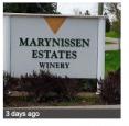 Marynissen Estates Winery in Niagara on the Lake - Wineries & Microbreweries in NIAGARA REGION Summer Fun Guide