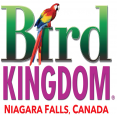 Bird Kingdom in Niagara Falls - Attractions in NIAGARA REGION Summer Fun Guide