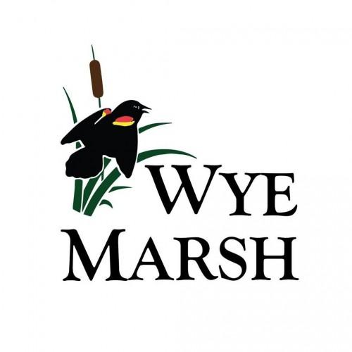 Wye Marsh Wildlife Centre in Midland - Outdoor Adventures in  Summer Fun Guide