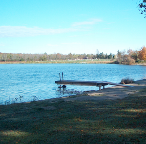 Bellamy Park Family Campground