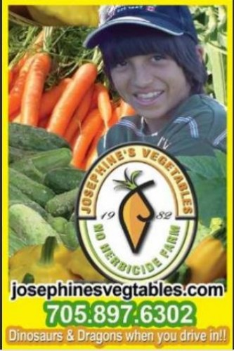 Josephine's Vegetables & Dinosaur Valley Mini Golf  in Greater Sudbury - Fun Farms, U-Pick & Markets in EASTERN ONTARIO Summer Fun Guide