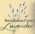 Prince Edward County Lavender Festival - July 6-7 & July 13-14, 2019 in Hillier - Festivals, Fairs & Events in EASTERN ONTARIO Summer Fun Guide