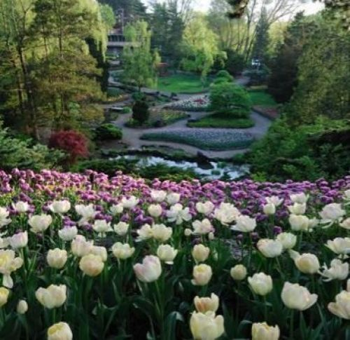 Royal Botanical Gardens in Burlington - Attractions in  Summer Fun Guide