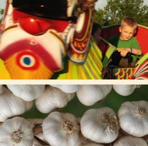 Verona Lions Club Jamboree & Garlic Festival!!
